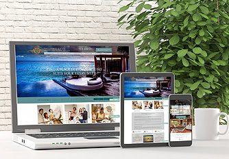 SEO Pro Package by Agent Image